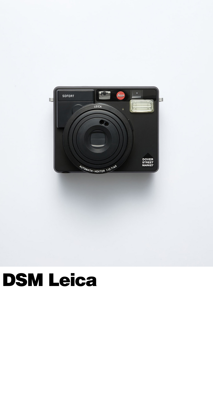 frieze_site_slice_04_Leica.jpg